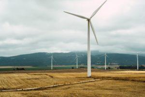Journée mondiale de l'environnement : retour sur nos actions !